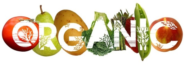 12-Reasons-Why-You-Should-Start-Eating-Organic-Food-increased-nutrient-contents