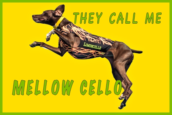 mellow-cello